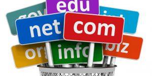 Choosing a TLD